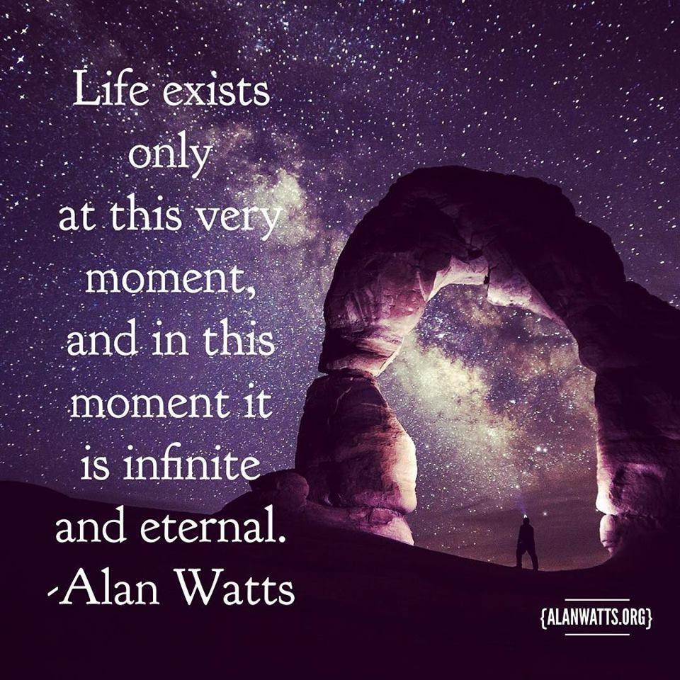 Alan Watts Alan watts quotes, Alan watts, Life