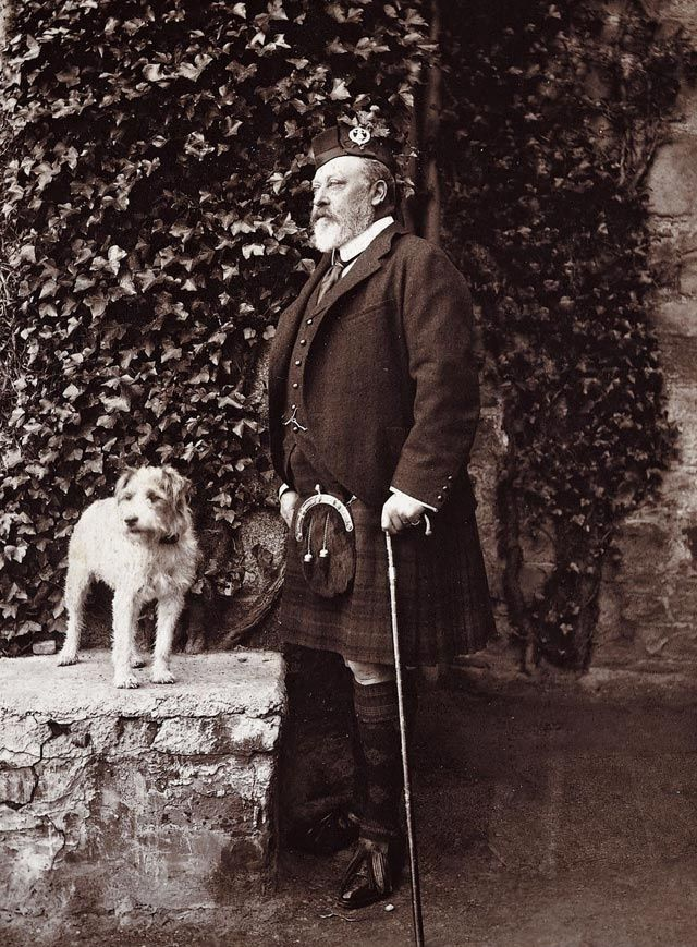 King Edward Vii With His Favorite Dog Caesar With Images King