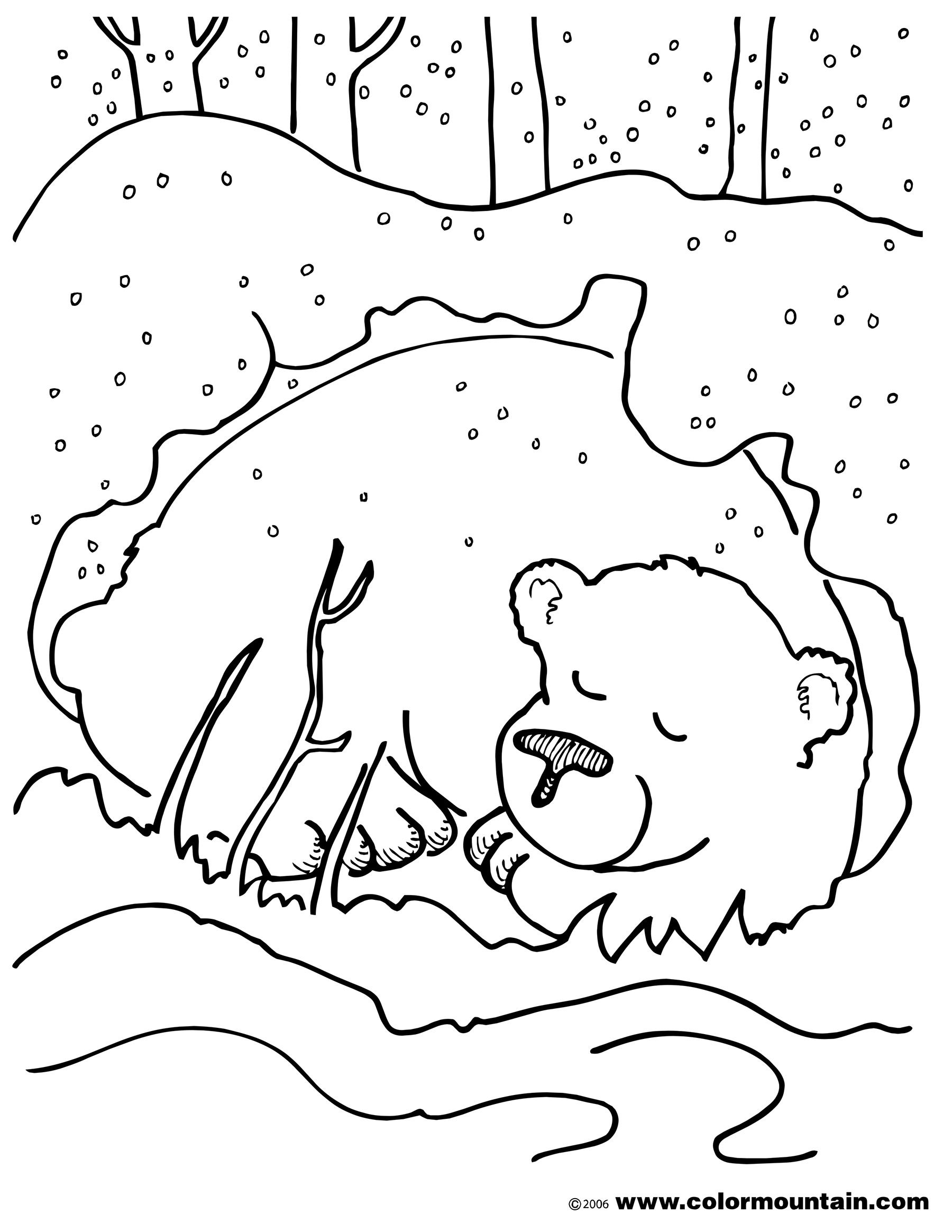 Hibernating bear color sheet coloring page