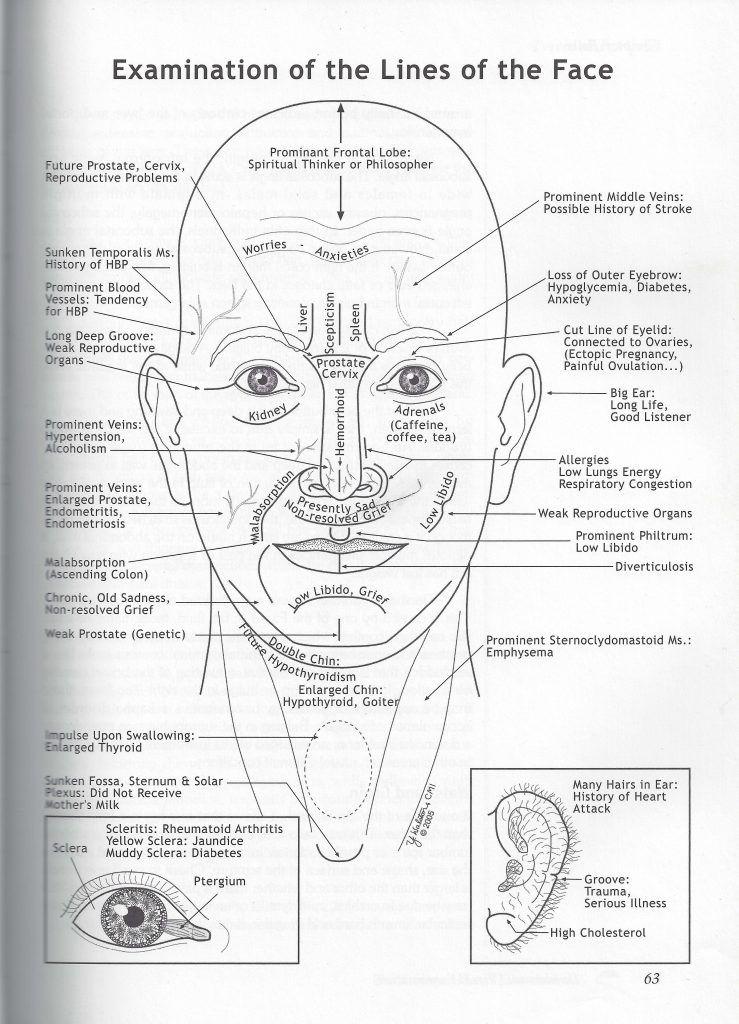 Facial photographic analysis software