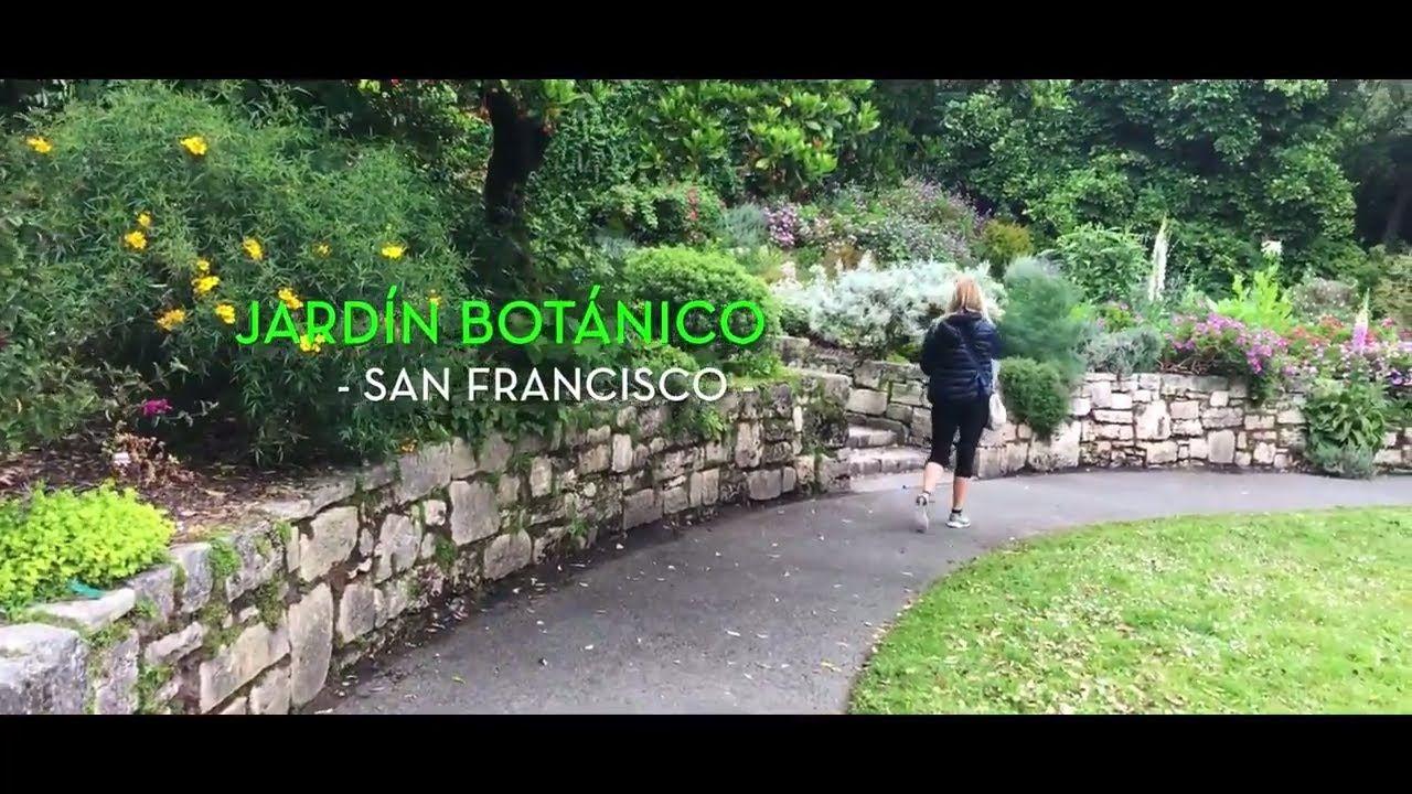 Jardín Botánico de San Francisco YouTube Jardin