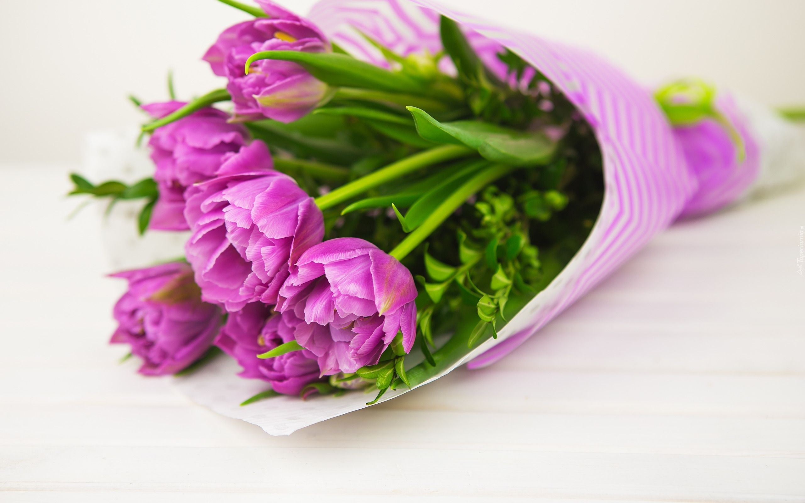 Tulipany Kwiaty Bukiet Piekne Tapety Na Twoj Pulpit Herbs Vegetables Cabbage