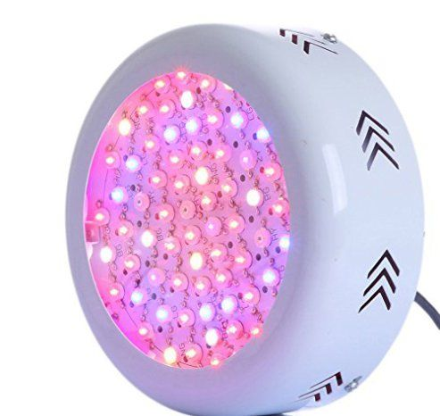 Best Led Grow Light Led Grow Lights Best Led Grow Lights Led Grow