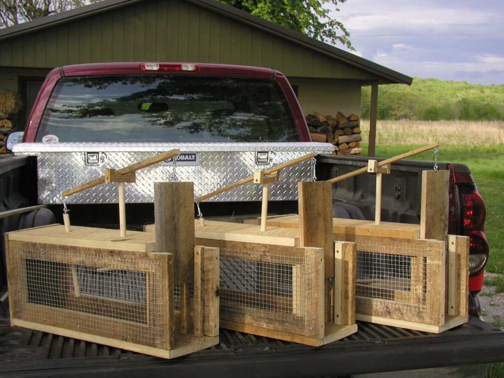 Large Easy Set Animal Cage Trap Animal traps, Live