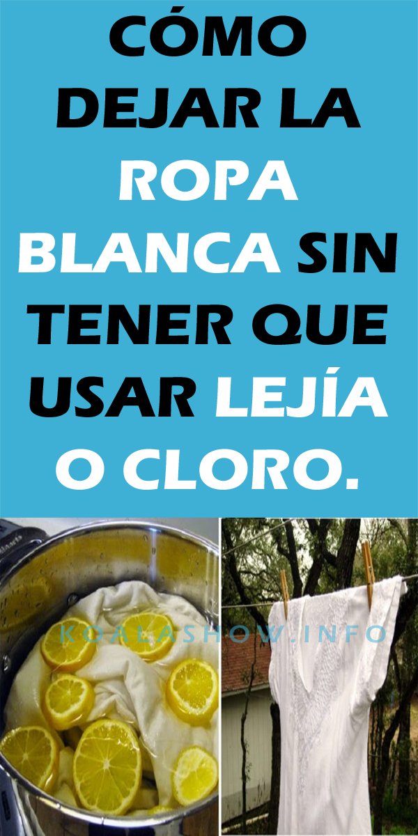 Cómo Dejar La Ropa Blanca Sin Tener Que Usar Lejía O Cloro Koala Show Ropa Blanca Detergente Casero Ropa