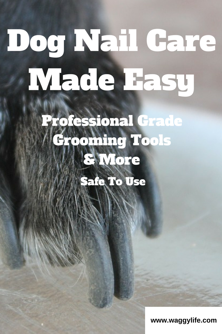 Pin On Dog Grooming And Hygiene Products