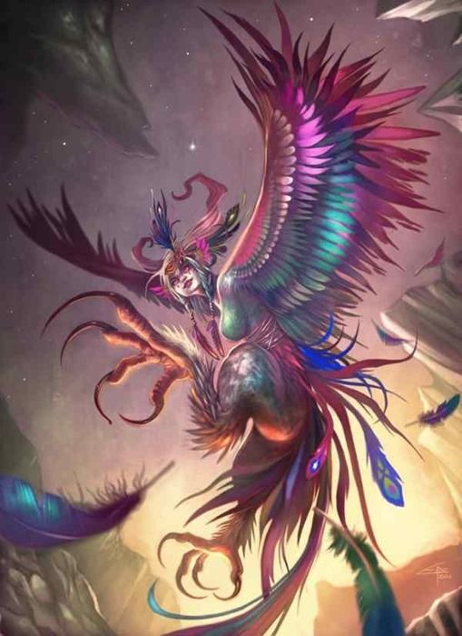 harpy_by_infraberry-d4q6v2y