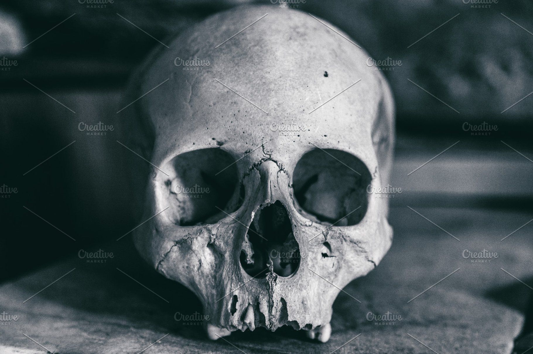 Ad: Dramatic Human skull by rtyc on @creativemarket. Very old skull in the dark room #creativemarket