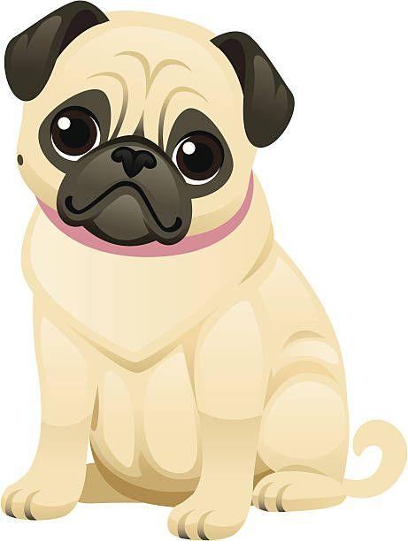 Cute Pug Vector Art Illustration Cute Pugs Pug Illustration