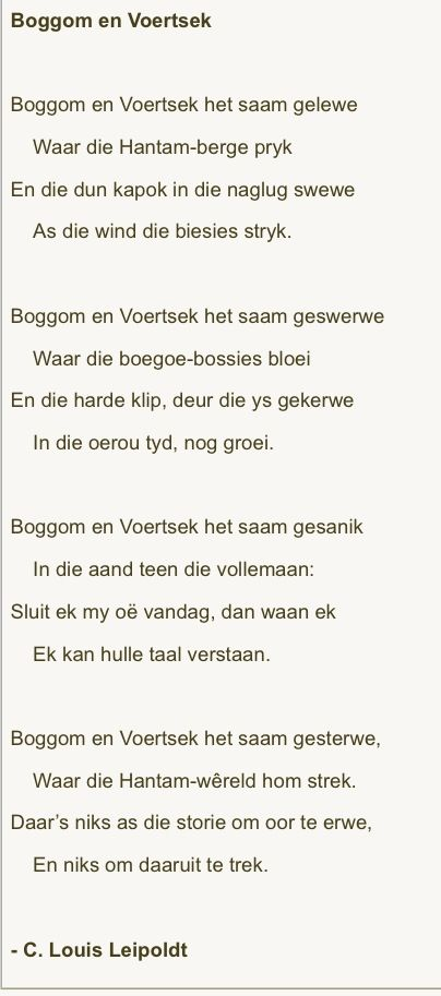 Afrikaanse Gedig Afrikaans Afrikaans Quotes Afrikaanse Quotes