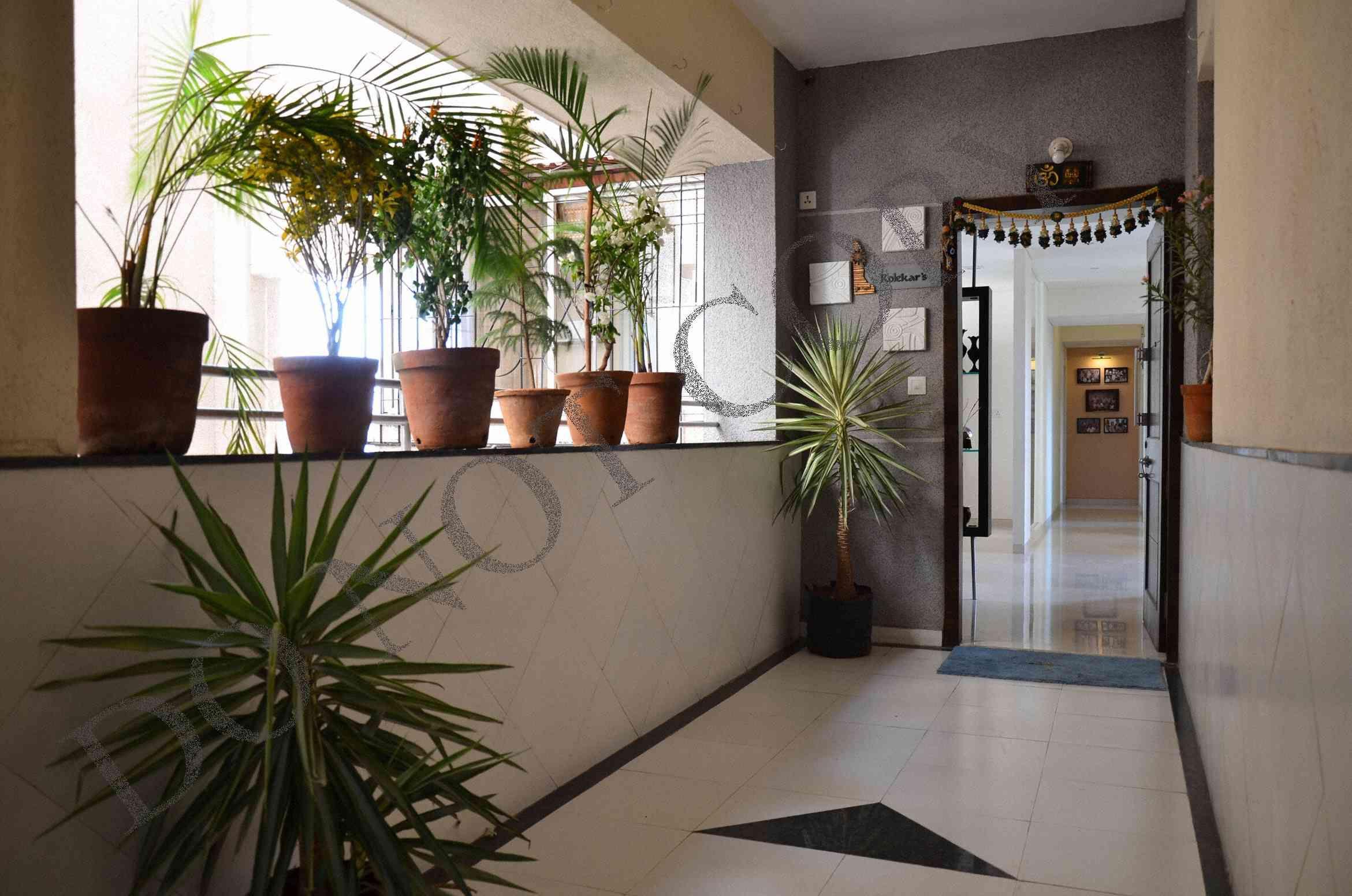 Flat entrance door  Flat front door, Apartment front doors, Front