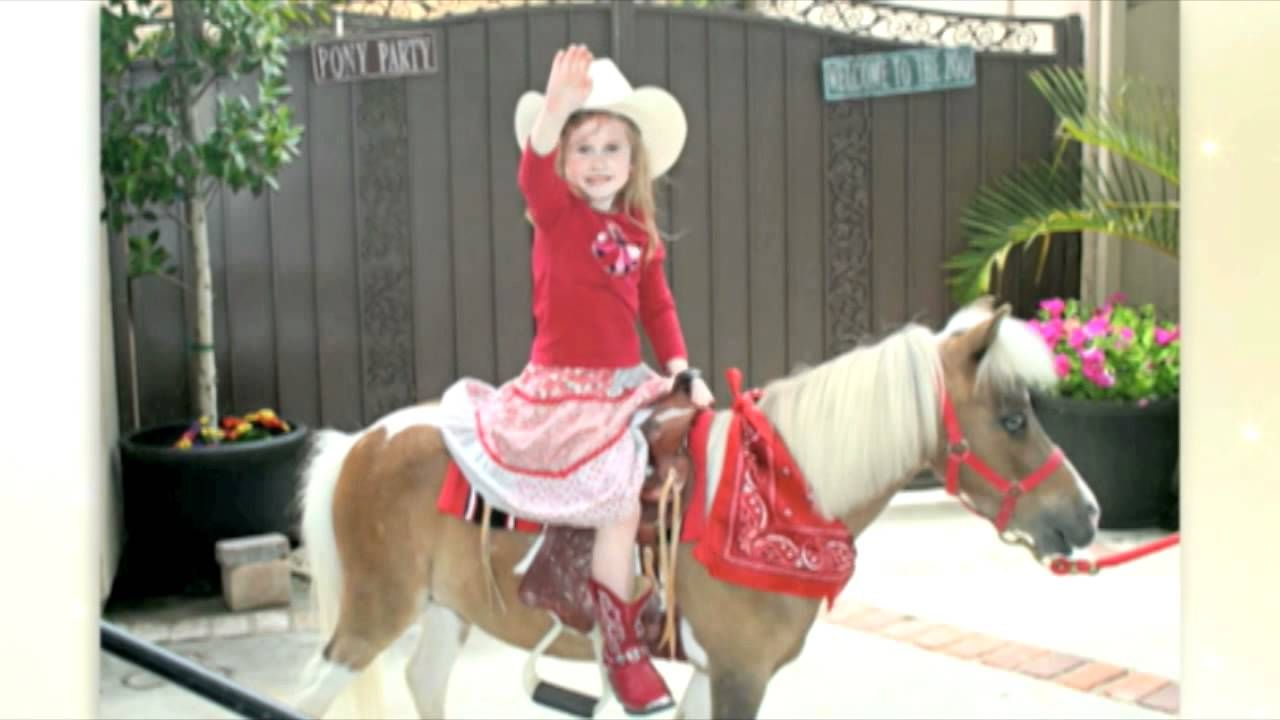 Pony Rides Pony for Party Ponies for Parties in Los