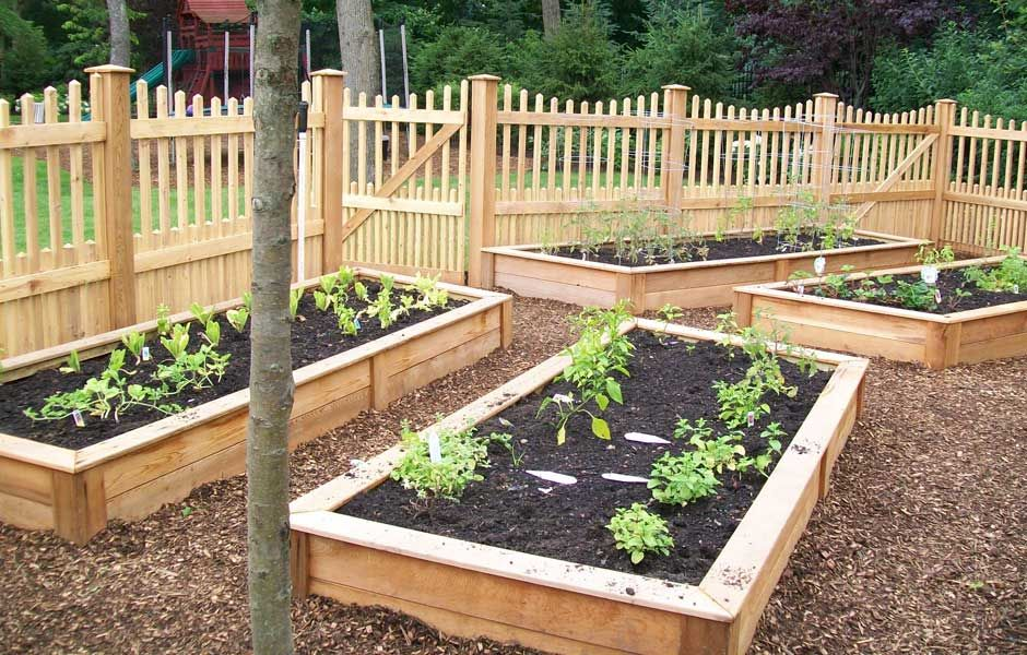 vegetable garden photos | Small Gardens and Details | Chester ...