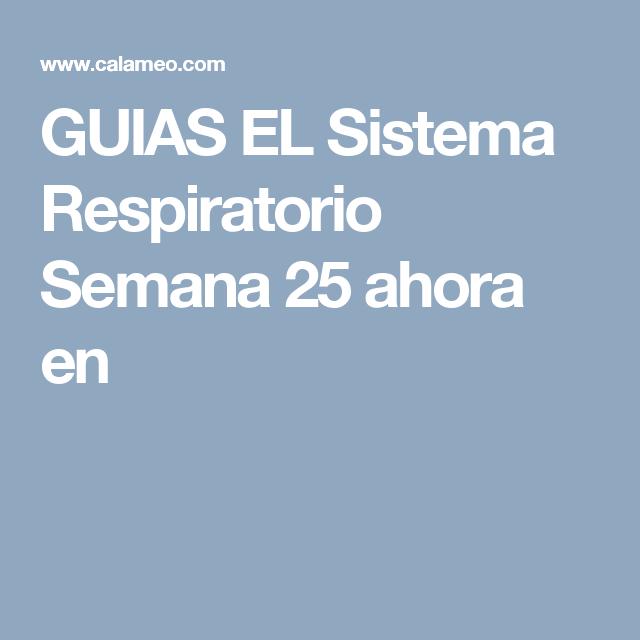 GUIAS EL Sistema Respiratorio  Semana 25 ahora en