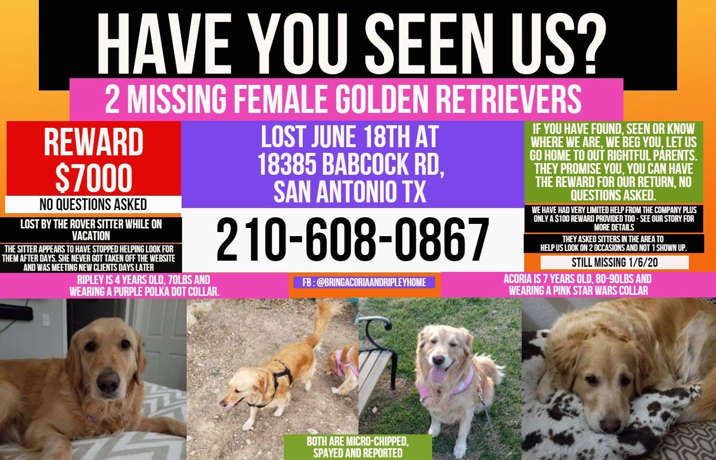 7k Reward For The Return Of Our 2 Missing Female Golden