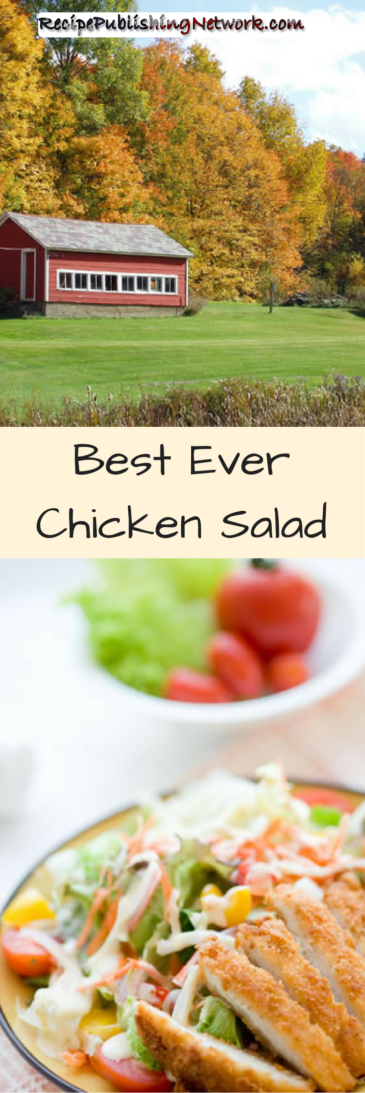 This fried chick salad is got a traditional blend of southern spices in the batter to give the chicken a bit of heat and a little bit of extra personality to it. If you prefer something, a little more subtle just leave out the cayenne.