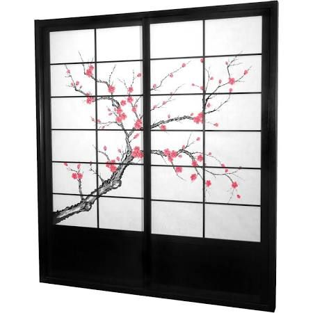 Marvelous Asian Style Closet Single Sliding Doors   Google Search