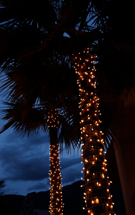 Palm Trees At Night Photo Palm Tree Print Palm Tree Canvas Etsy Night Aesthetic Summer Night Photos Aesthetic Wallpapers