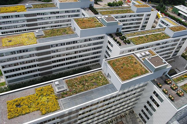 Green Roof On German Office Buildings Green Roof Living Green