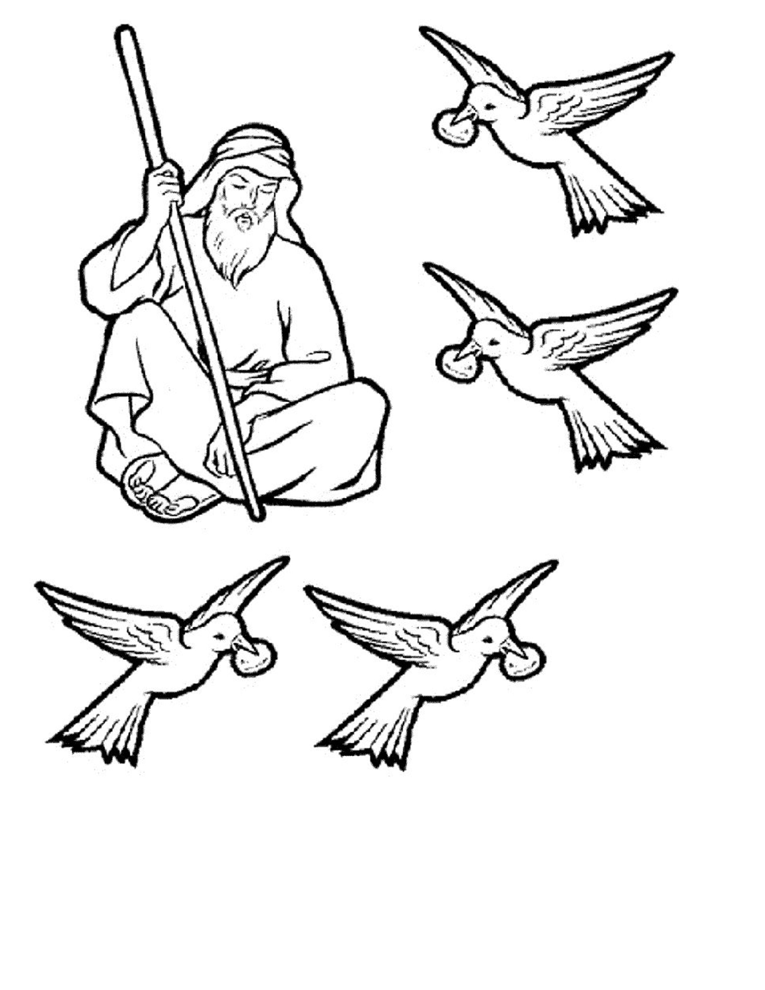 Elijah And The Ravens Bible Crafts Bible School Crafts Bible Coloring Pages