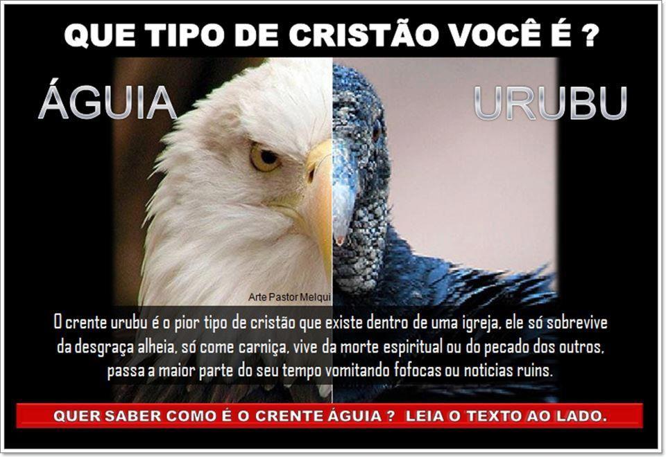 Cristão águia ou cristão urubu - http://www.facebook.com/photo.php?fbid=572972889380689=a.572479769430001.1073741828.572470716097573=1=nf - 480672_572972889380689_268268843_n.jpg (960×660)