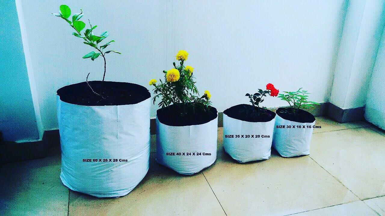 Grow Bag For Whole Price Aquarium Wholer In