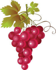 Hop Grape Vines Red Grapes Clipart Png Image With Transparent Background Png Free Png Images Red Grapes Grapes Clip Art