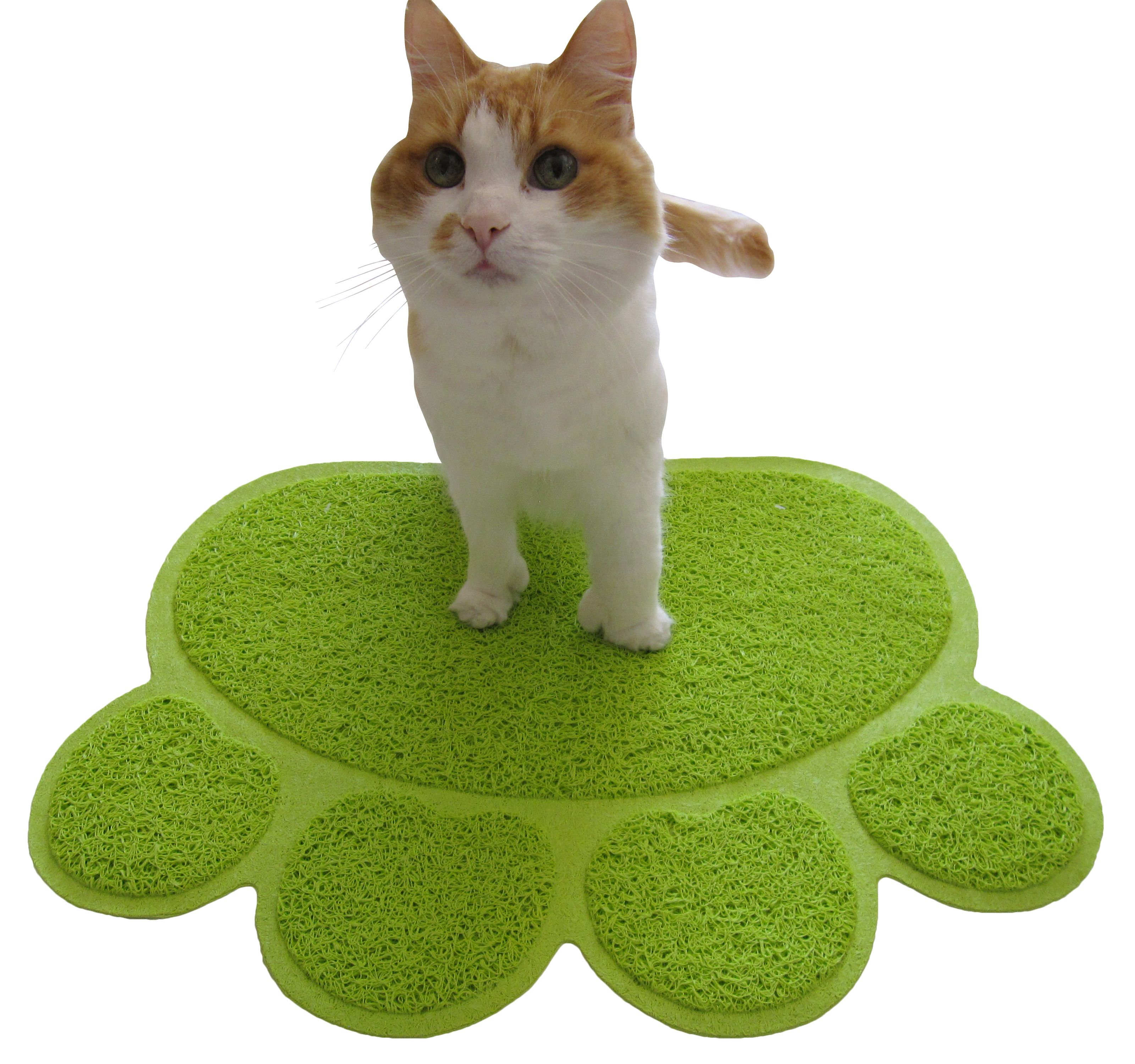 cat grass your indoor mike graphics norman mats hacks cats pillow make bed litter a for by
