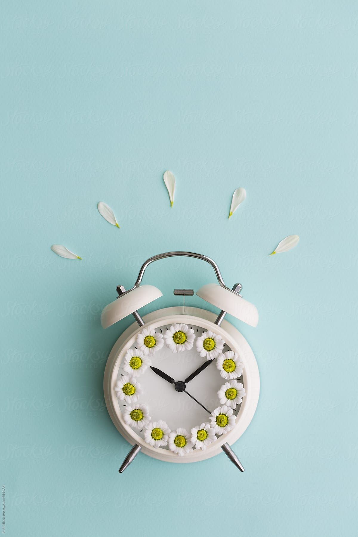 Alarm Clock With Daisies Download This High Resolution Stock Photo By Ruth Black From Stocksy United Alarm Clock Clock Wallpaper Clock