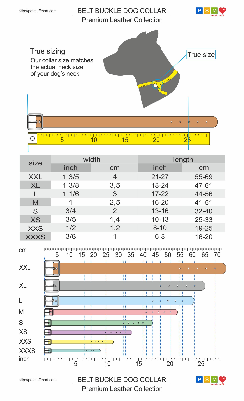 Belt Buckle Dog Collar Sizing Chart Petstuffmart Com