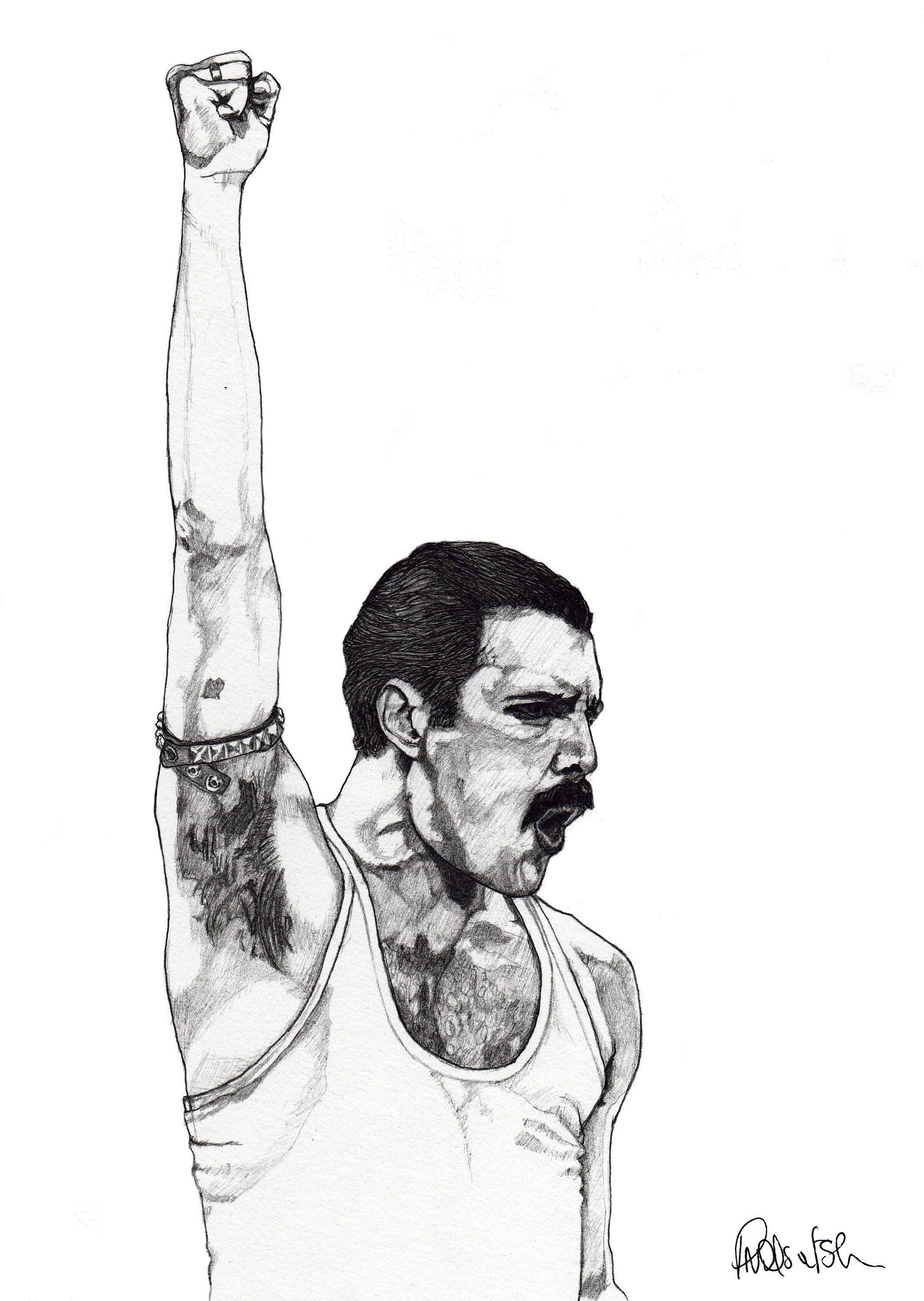 freddie mercury drawing fine art pencil illustration etsy in 2020 queen art queen drawing music drawings freddie mercury drawing fine art pencil