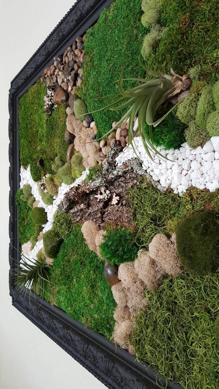 Wall Moss Art Wall Garden Real Preserved Moss Care Free Etsy In 2020 Moss Wall Art Wall Garden Garden Wall Designs