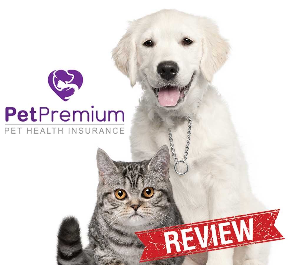 Pet Insurance Reviews For Dogs Uk