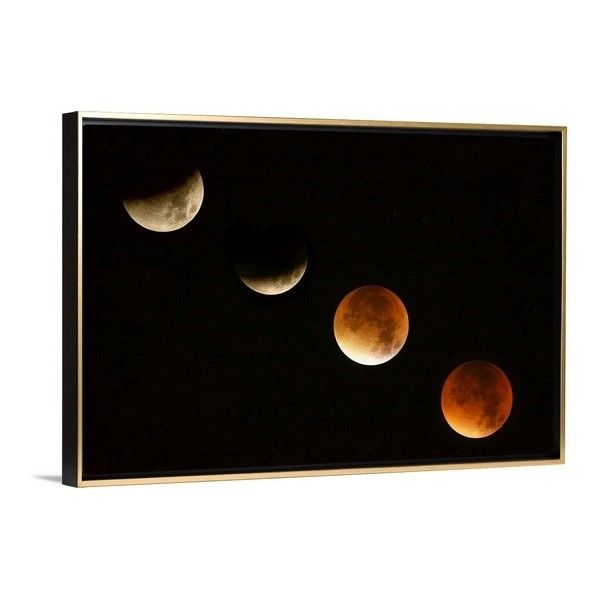 Blood Moon (420 NZD) ❤ liked on Polyvore featuring home and home decor