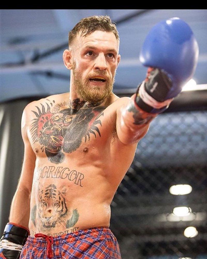 Pin by Melissa on Conor  Pinterest  Conor mcgregor Connor
