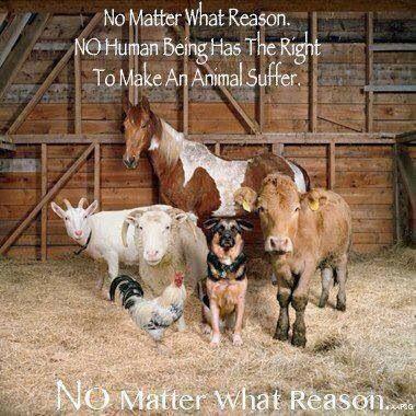 No matter....