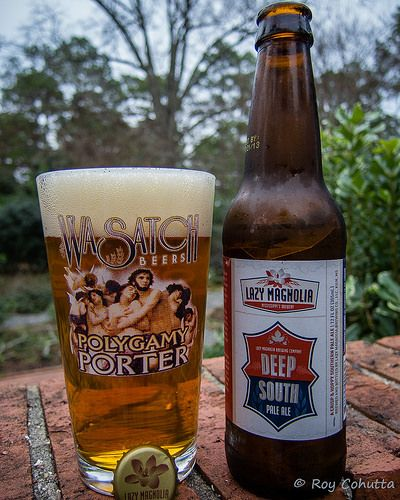 Lazy Magnolia Deep South Pale Ale Southern Craft Beer Pinterest