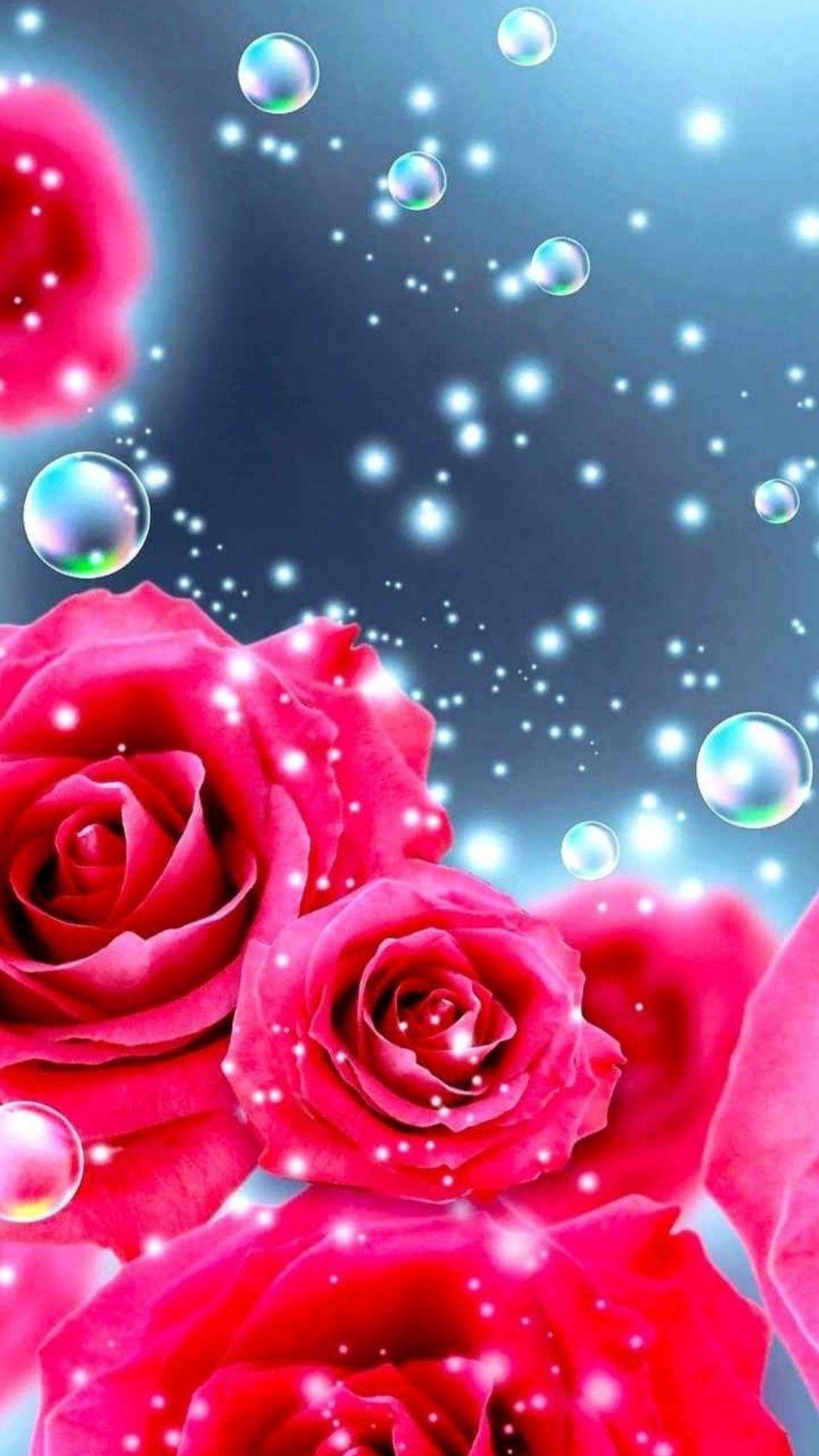 Pin By Yanett Munoz On Red Roses Flower Phone Wallpaper Cute Flower Wallpapers Rose Flower Wallpaper