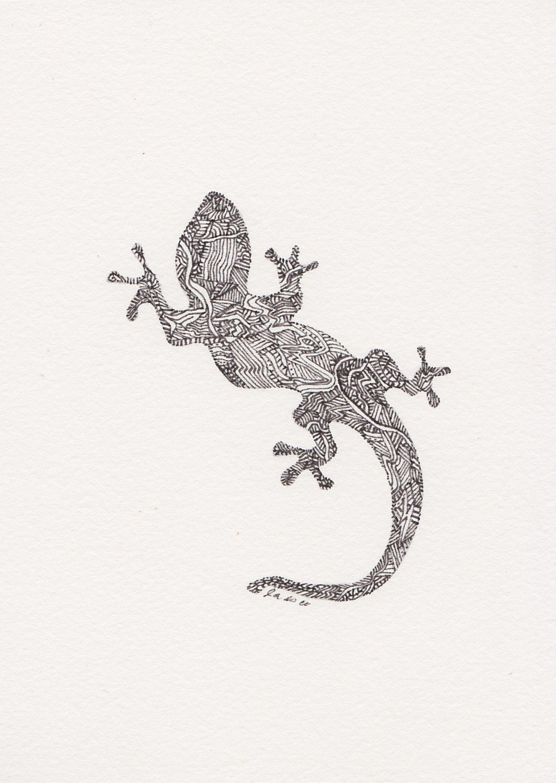 original pen and ink illustration gecko lizard by figgymoss