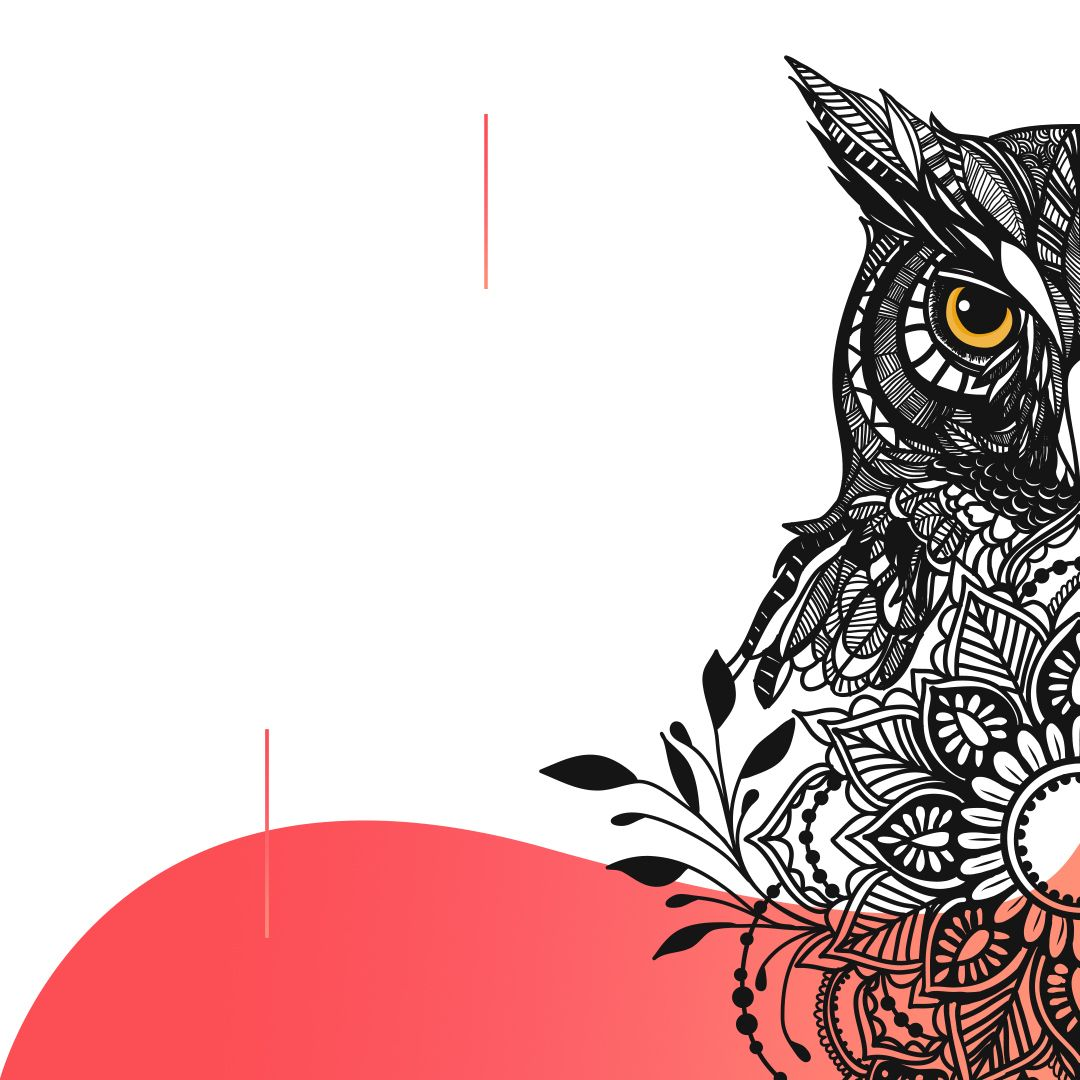 رسم باستخدام Ipad Pro 11 عن طريق برنامج Adobe Draw بومة رسم تصميم شعار لوجو Drawing Logo Illustrator Owl Bahrain Illustration Animals Rooster