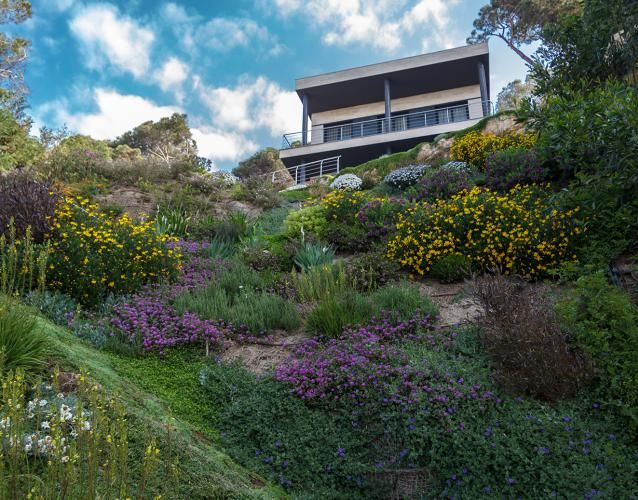 jardín en pendiente, junto al mar | landshaft - empresa de