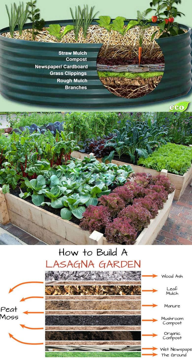 28 Best Diy Raised Bed Gardens Easy Tutorials Ideas Designs To Build In 2020 Vegetable Garden Raised Beds Raised Garden Beds Diy Vegetables Vegetable Garden Design