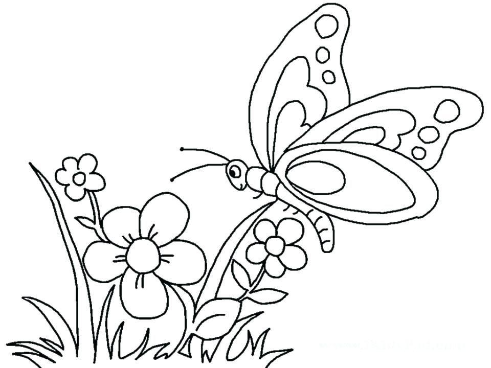 72ac08759d465aba8f7898a25e43e768 » Butterfly Flower Coloring Pages