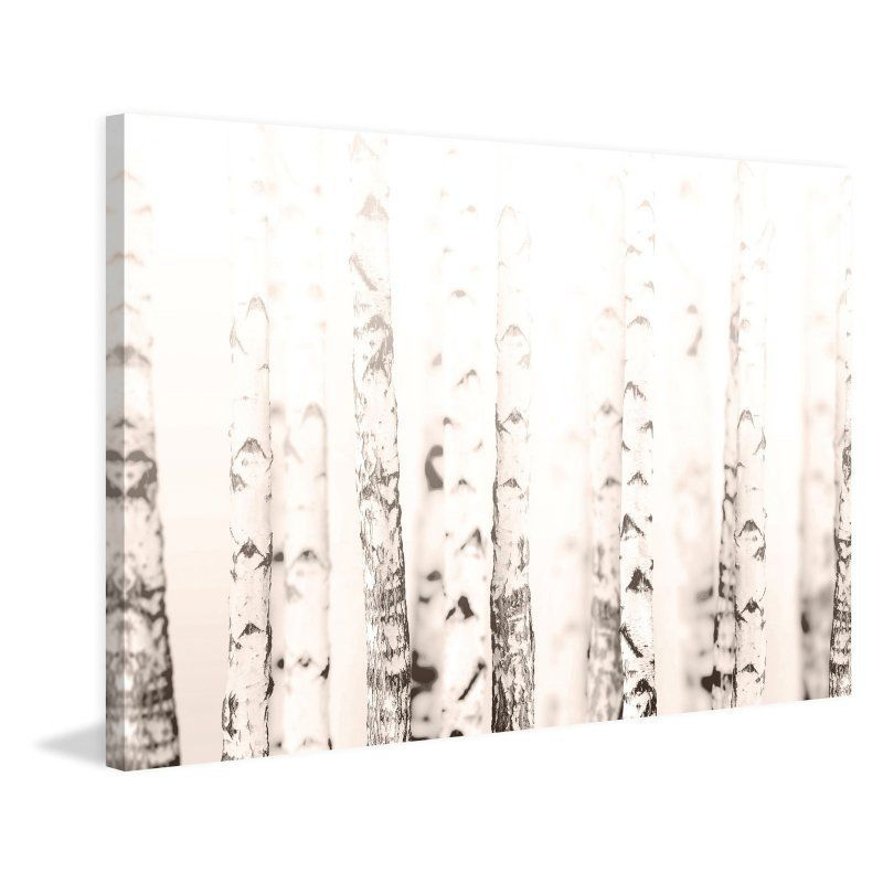 Marmont Hill Birchwood Painting Print on Wrapped Canvas - MH-WHT-14-C-