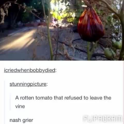 It looks like just a bag of shit but that would still apply soo..