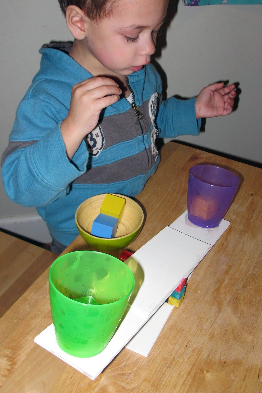 Homemade Levers Science Play