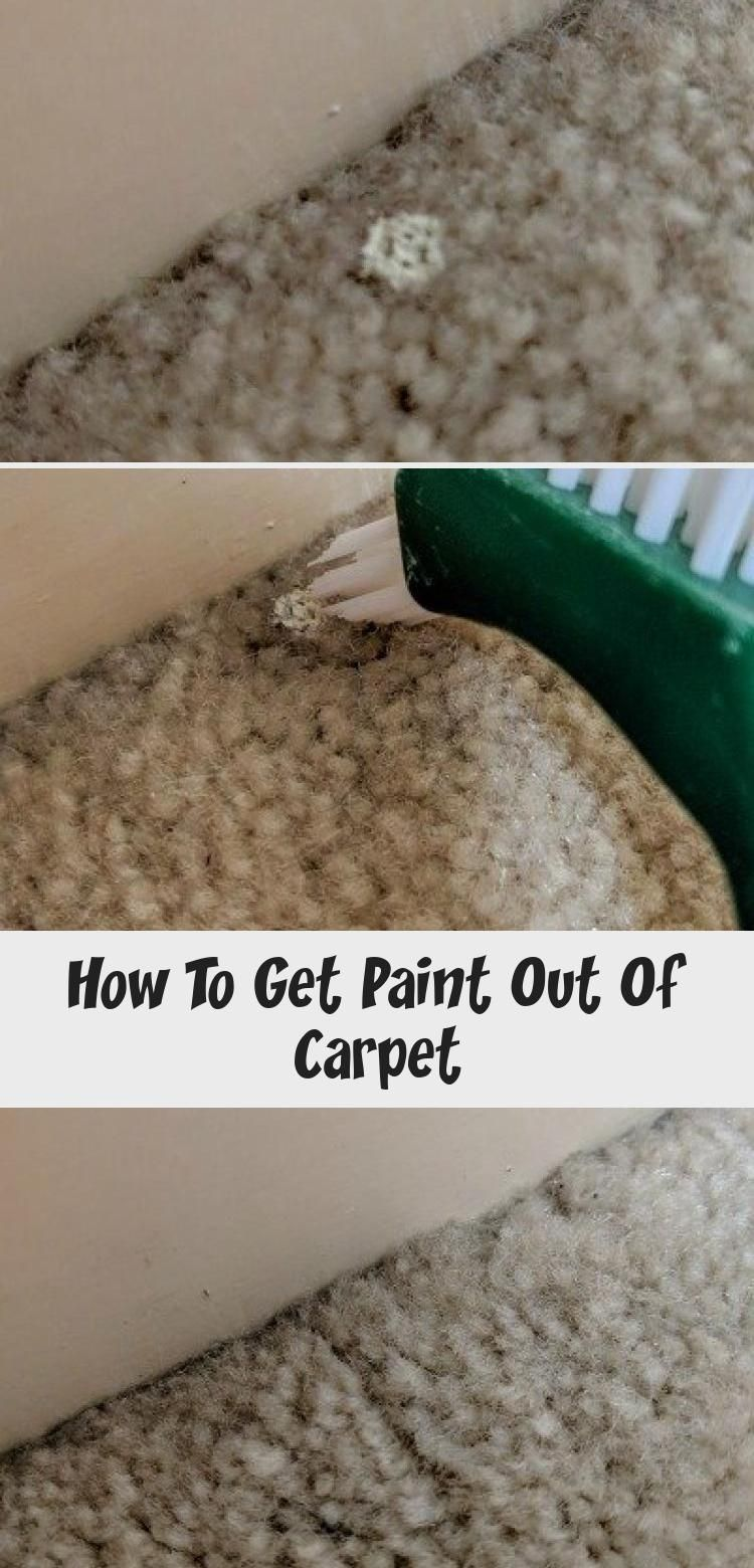 How To Get Paint Out Of Carpet In 2020 Stain Remover Carpet Carpet