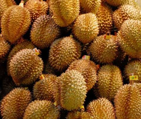 Durian A Spiky Fruit That Reportedly Smells Like A Corpse And May Or May Not Taste Good Whenever I Come Across It In Real Life C Food Animals Durian Fruit