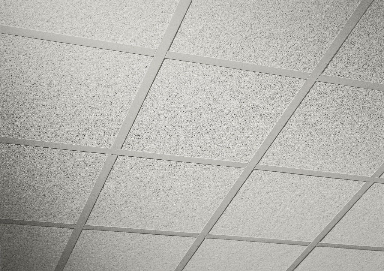 Acoustical ceiling google search id wall treatment project some of the roofs built in those years were made with acoustic ceiling tiles if your roof has these tiles and are deteriorating take appropriate measures dailygadgetfo Images