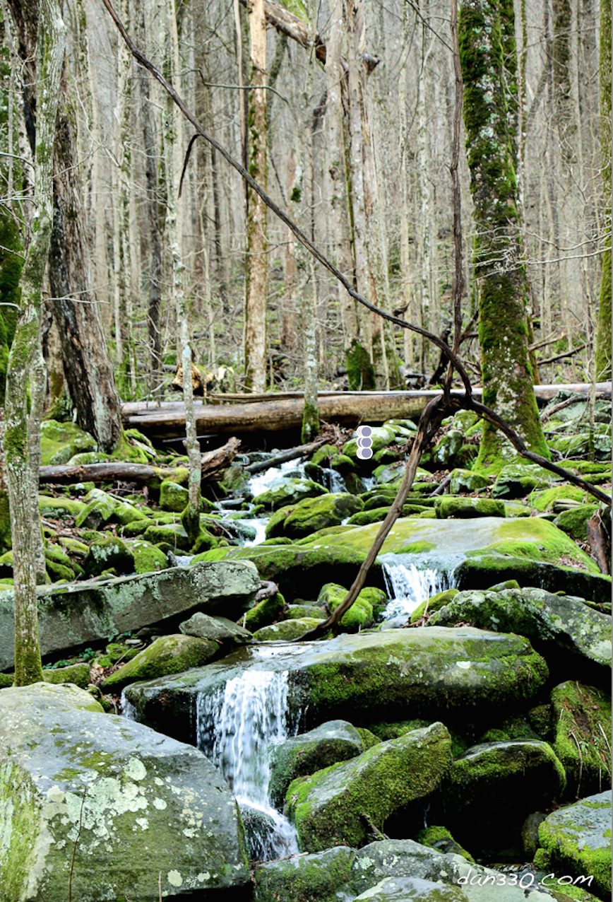 A visit to Great Smoky Mountain National Park in January. Still beautiful. http://livedan330.com/2016/02/14/great-smoky-mountain-national-park-in-january/